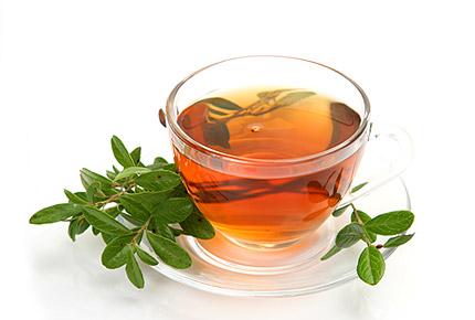 какой чай для похудения лучше попить